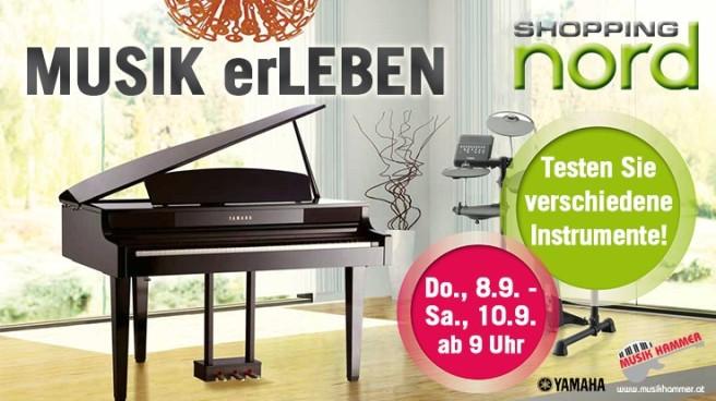 3239_4_musikerleben2016_ws[1]